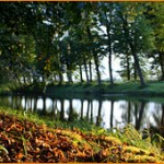 Осенью в Нарнии