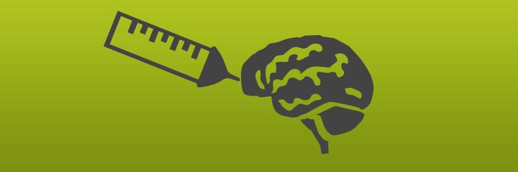 brain-education